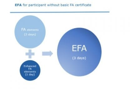 EFA diagram